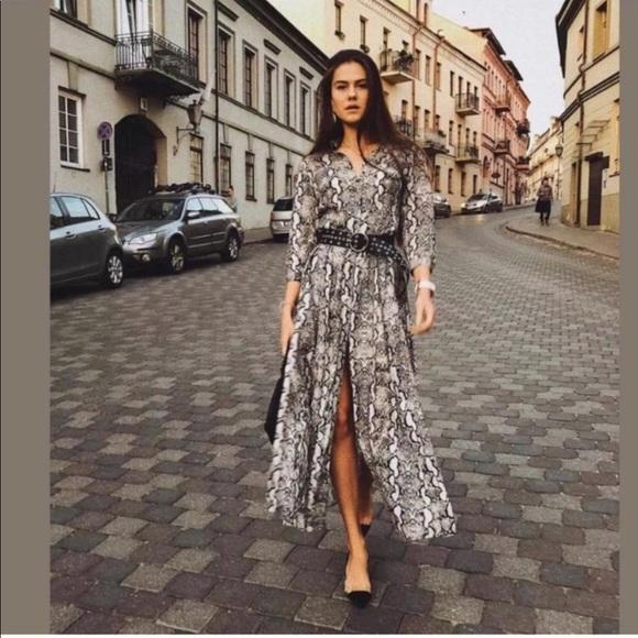 dbaa6bfb Zara Snakeskin Print Maxi Dress M NWT